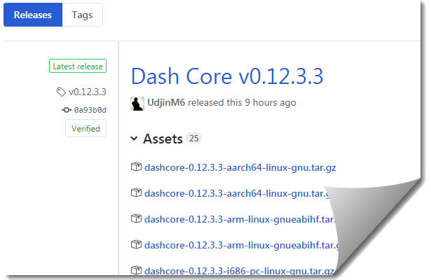 DASH 12.3.3 Upgrade
